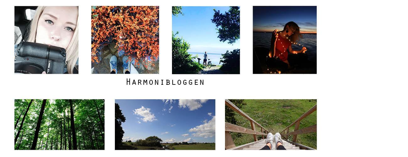Harmoni bloggen