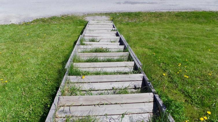 Första stegen till Silent walk ut i den underbara naturen