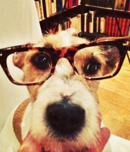 Winner provar mina snygga läsglasögon.