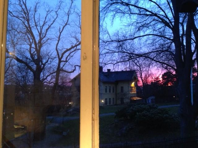 Från mitt köksfönster ser jag Djurgårdsskolan. Här har min mamma, jag och mina barn gått som små.