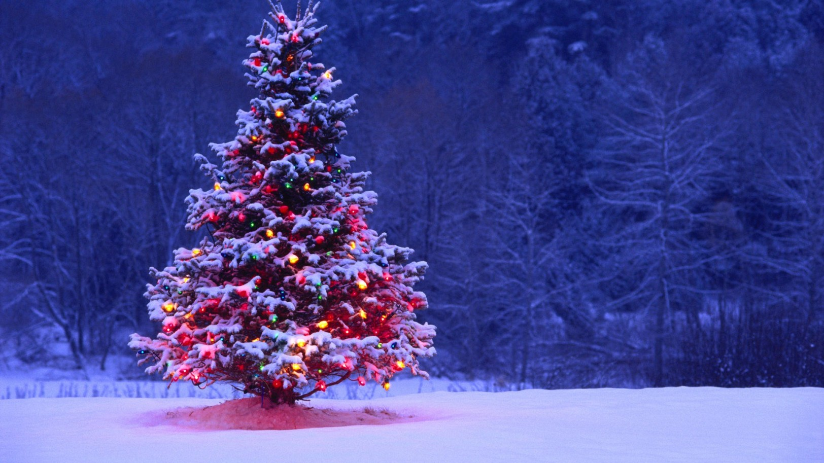 christmas-hd-background-christmas-backgrounds-background-christmas-25829