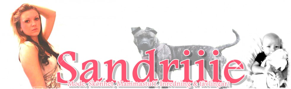 Saandriiie – Inte bara en mamma blogg!