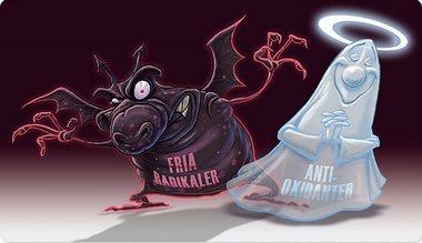 antioxidanter fria radikaler